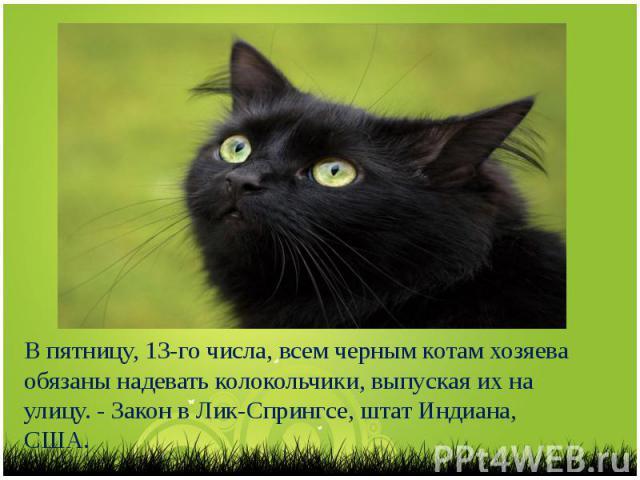 В пятницу, 13-го числа, всем черным котам хозяева обязаны надевать колокольчики, выпуская их на улицу. - Закон в Лик-Спрингсе, штат Индиана, США.