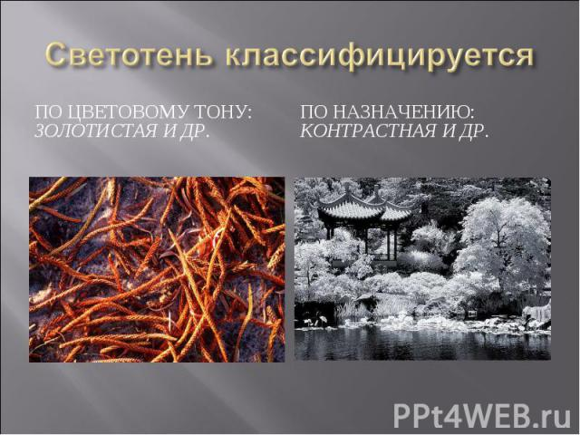 Светотень классифицируетсяПо цветовому тону: золотистая и др.По назначению: контрастная и др.