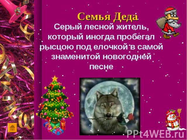 Серый лесной житель, который иногда пробегал рысцою под елочкой в самой знаменитой новогодней песне