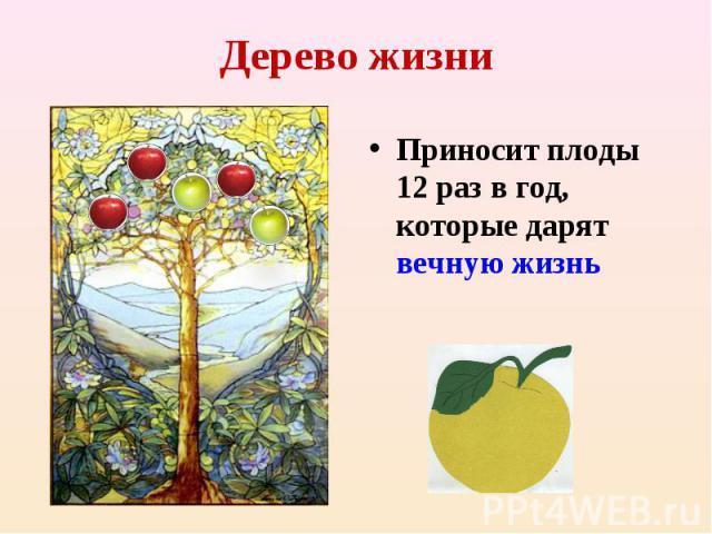 Дерево жизниПриносит плоды 12 раз в год, которые дарят вечную жизнь