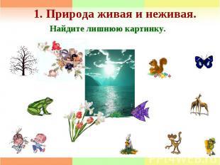 1. Природа живая и неживая.Найдите лишнюю картинку.