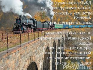 Их (туристов) на КБЖД поражают фундаментальная прочность и изящество тоннелей, г