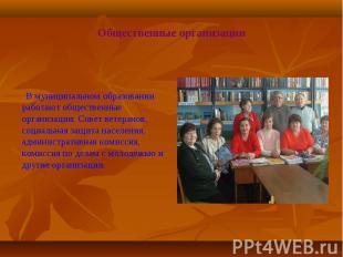 В муниципальном образовании работают общественные организации: Совет ветеранов,