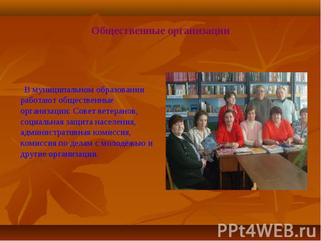 В муниципальном образовании работают общественные организации: Совет ветеранов, социальная защита населения, административная комиссия, комиссия по делам с молодёжью и другие организации.