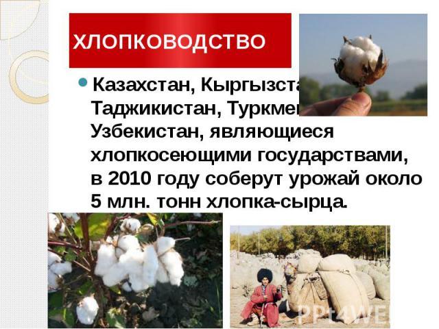 ХЛОПКОВОДСТВО Казахстан, Кыргызстан, Таджикистан, Туркменистан и Узбекистан, являющиеся хлопкосеющими государствами, в 2010 году соберут урожай около 5 млн. тонн хлопка-сырца.
