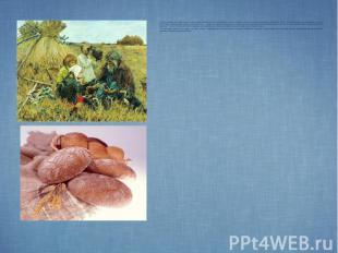 Жители городов и сел Приазовского края, в первую очередь, были хлеборобами – люд
