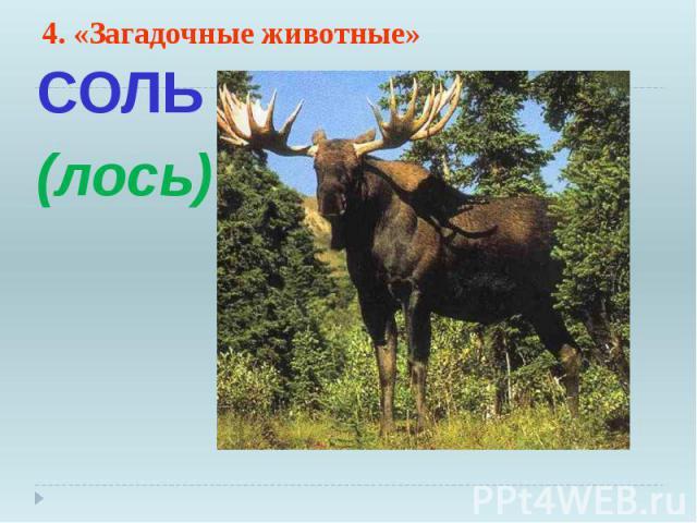 4. «Загадочные животные» СОЛЬ (лось)