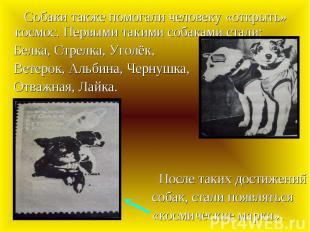 Собаки также помогали человеку «открыть» космос. Первыми такими собаками стали: