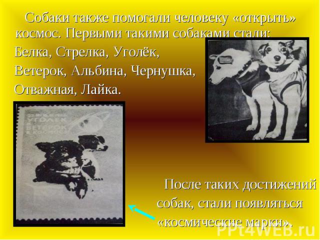 Собаки также помогали человеку «открыть» космос. Первыми такими собаками стали: Собаки также помогали человеку «открыть» космос. Первыми такими собаками стали: Белка, Стрелка, Уголёк, Ветерок, Альбина, Чернушка, Отважная, Лайка. После таких достижен…