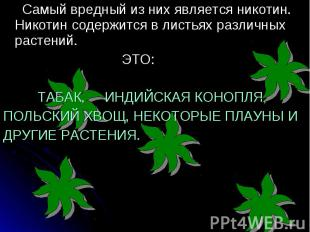 Самый вредный из них является никотин. Никотин содержится в листьях различных ра