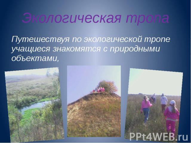 Экологическая тропа Путешествуя по экологической тропе учащиеся знакомятся с природными объектами,
