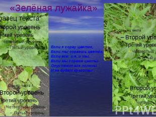 «Зелёная лужайка»
