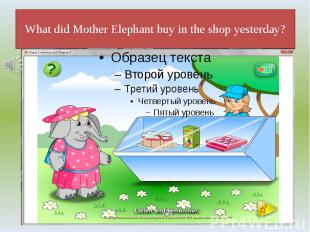 What did Mother Elephant buy in the shop yesterday?