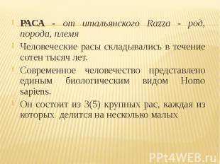 РАСА - от итальянского Razza - род, порода, племя РАСА - от итальянского Razza -