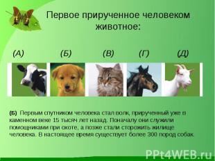 (А) (Б) (В) (Г) (Д) (А) (Б) (В) (Г) (Д)