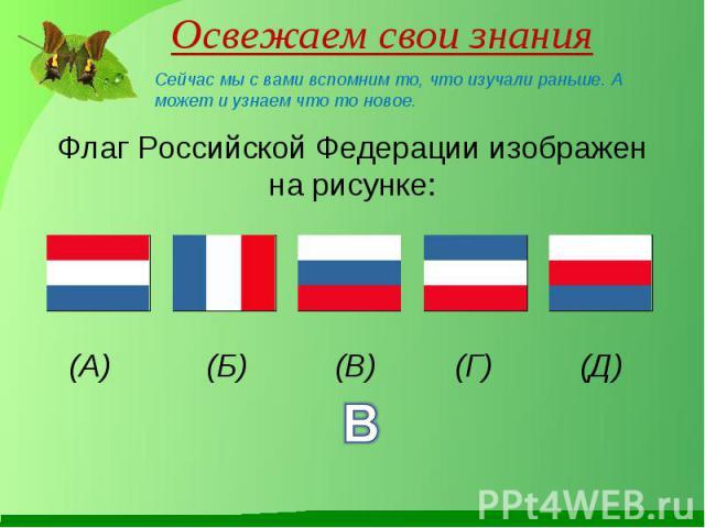 Флаг Российской Федерации изображен на рисунке: Флаг Российской Федерации изображен на рисунке: (А) (Б) (В) (Г) (Д)