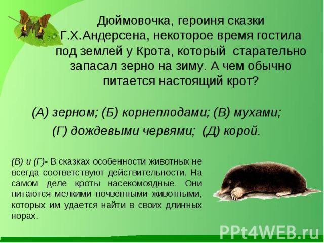(А) зерном; (Б) корнеплодами; (В) мухами; (А) зерном; (Б) корнеплодами; (В) мухами; (Г) дождевыми червями; (Д) корой.