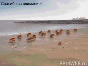 Маленький мультик)))