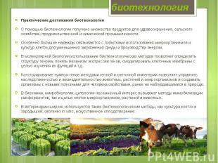 биотехнология Практические достижения биотехнологии С помощью биотехнологии полу