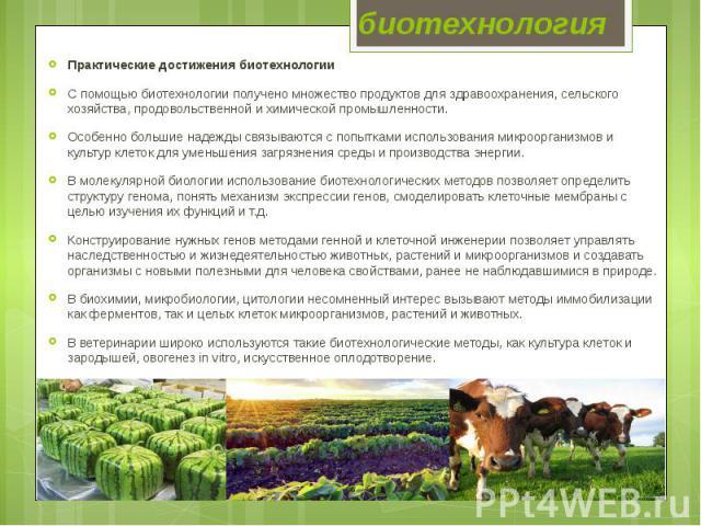 биотехнология Практические достижения биотехнологии С помощью биотехнологии получено множество продуктов для здравоохранения, сельского хозяйства, продовольственной и химической промышленности. Особенно большие надежды связываются с попытками исполь…