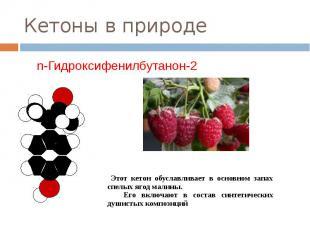 Кетоны в природе n-Гидроксифенилбутанон-2