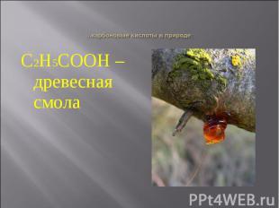 С2Н5СООН – древесная смола С2Н5СООН – древесная смола