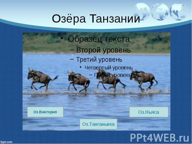 Озёра Танзании