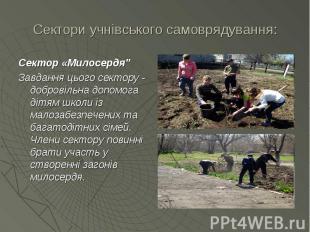 """Сектори учнівського самоврядування: Сектор «Милосердя"""" Завдання цього секто"""