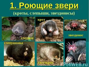 1. Роющие звери