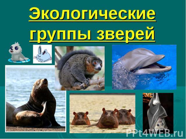 Экологические группы зверей