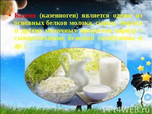 Казеин (казеиноген) является одним из основных белков молока, сыров, творога и д
