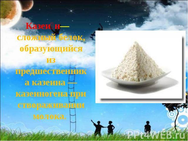 Казеи н— сложный белок, образующийся из предшественника казеина — казеиногена при створаживании молока. Казеи н— сложный белок, образующийся из предшественника казеина — казеиногена при створаживании молока.