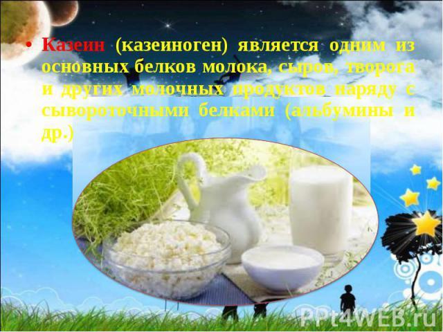 Казеин (казеиноген) является одним из основных белков молока, сыров, творога и других молочных продуктов наряду с сывороточными белками (альбумины и др.) Казеин (казеиноген) является одним из основных белков молока, сыров, творога и других молочных …
