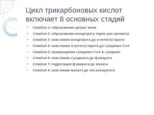 Цикл трикарбоновых кислот включает 8 основных стадий Стадия 1: образование цитра