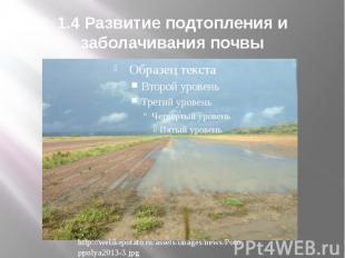 1.4 Развитие подтопления и заболачивания почвы