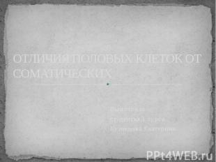 ОТЛИЧИЯ ПОЛОВЫХ КЛЕТОК ОТ СОМАТИЧЕСКИХ Выполнила студентка 1 курса Кузнецова Ека