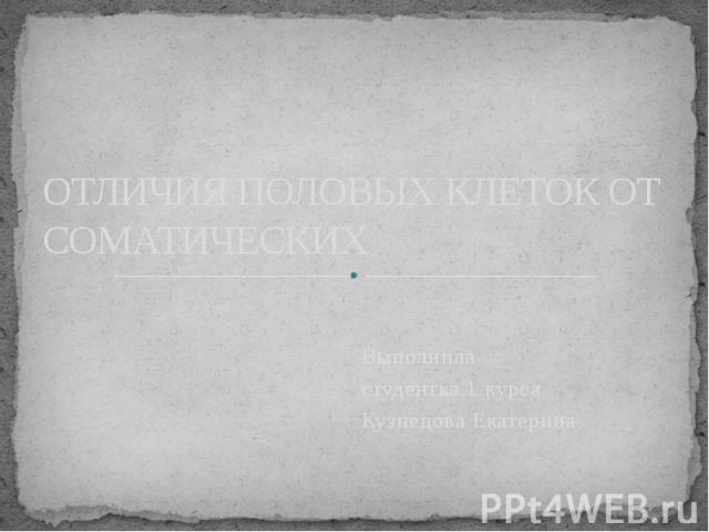 ОТЛИЧИЯ ПОЛОВЫХ КЛЕТОК ОТ СОМАТИЧЕСКИХ Выполнила студентка 1 курса Кузнецова Екатерина