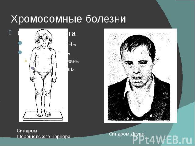 Хромосомные болезни
