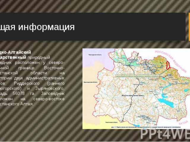 Общая информация Западно-Алтайский государственныйприродный заповедник расположен у северо- восточной границе Восточно-Казахстанской области на территории двух административных районов: Риддерского (раннего Лениногорского) и Зыряновского. Площ…
