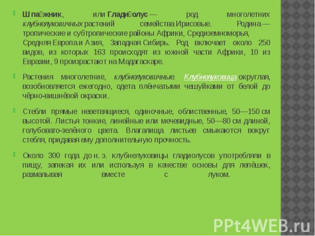 Шпа жник, илиГлади олус— род многолетних клубнелуковичныхрастений семействаИрисовые. Родина—тропическиеисубтропическиерайоныАфрики,Средиземноморья, СредняяЕвропаиАзия, Зап…