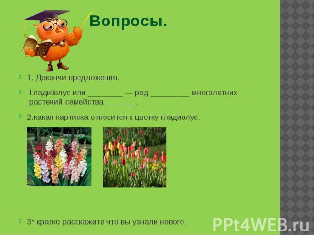 Вопросы. 1. Докончи предложения. Глади олус или ________— род _________ многолетних растений семейства_______. 2.какая картинка относится к цветку гладиолус. 3* кратко расскажите что вы узнали нового.