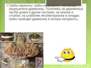 Грибы-паразиты: грибы-сапрофиты – активные разрушители древесины. Поселяясь на д