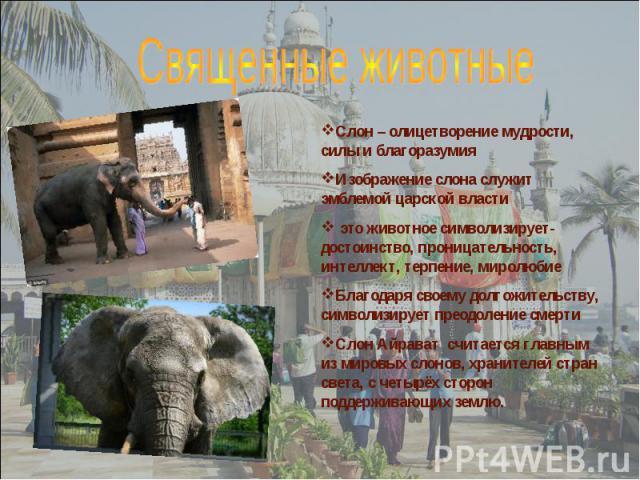 Слон – олицетворение мудрости, силы и благоразумия Изображение слона служит эмблемой царской власти это животное символизирует-достоинство, проницательность, интеллект, терпение, миролюбие Благодаря своему долгожительству, символизирует преодоление …