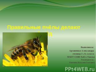 Правильные пчёлы делают правильный мёдВыполнила: Архипенко Александра ученица 3