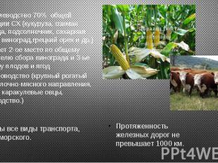 Растениеводство 70% общей продукции СХ (кукуруза, озимая пшеница, подсолнечник,