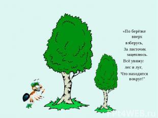 «По берёзке вверх взберусь, За листочек зацеплюсь. Всё увижу: лес и луг, Что нах