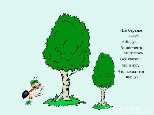 """«По берёзке вверх взберусь, За листочек зацеплюсь. Всё увижу: лес и луг, Что находится вокруг!"""""""