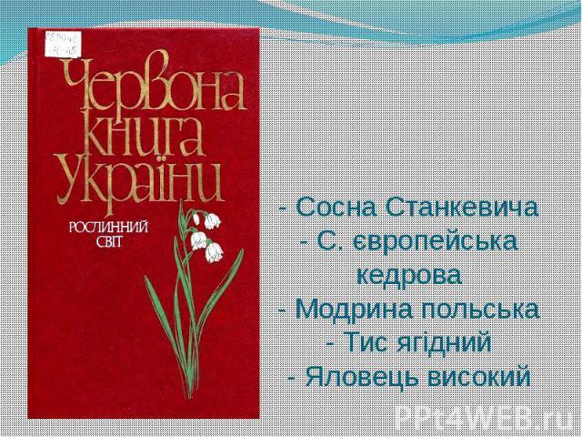 - Сосна Станкевича - С. європейська кедрова - Модрина польська - Тис ягідний - Яловець високий