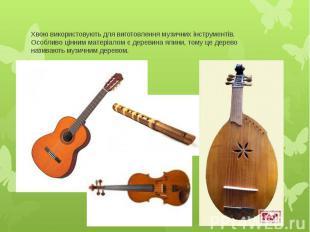 Хвою використовують для виготовлення музичних інструментів. Особливо цінним мате