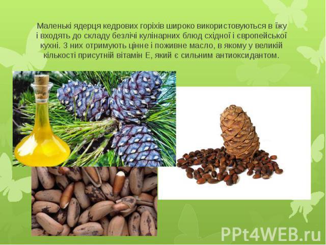 Маленькі ядерця кедрових горіхів широко використовуються в їжу і входять до складу безлічі кулінарних блюд східної і європейської кухні. З них отримують цінне і поживне масло, в якому у великій кількості присутній вітамін Е, який є сильним антиоксидантом.
